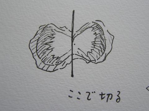 ファイル 903-2.jpg