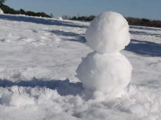 雪だるまの作成は都民のつとめ