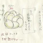 絵日記1612xx:キウイs